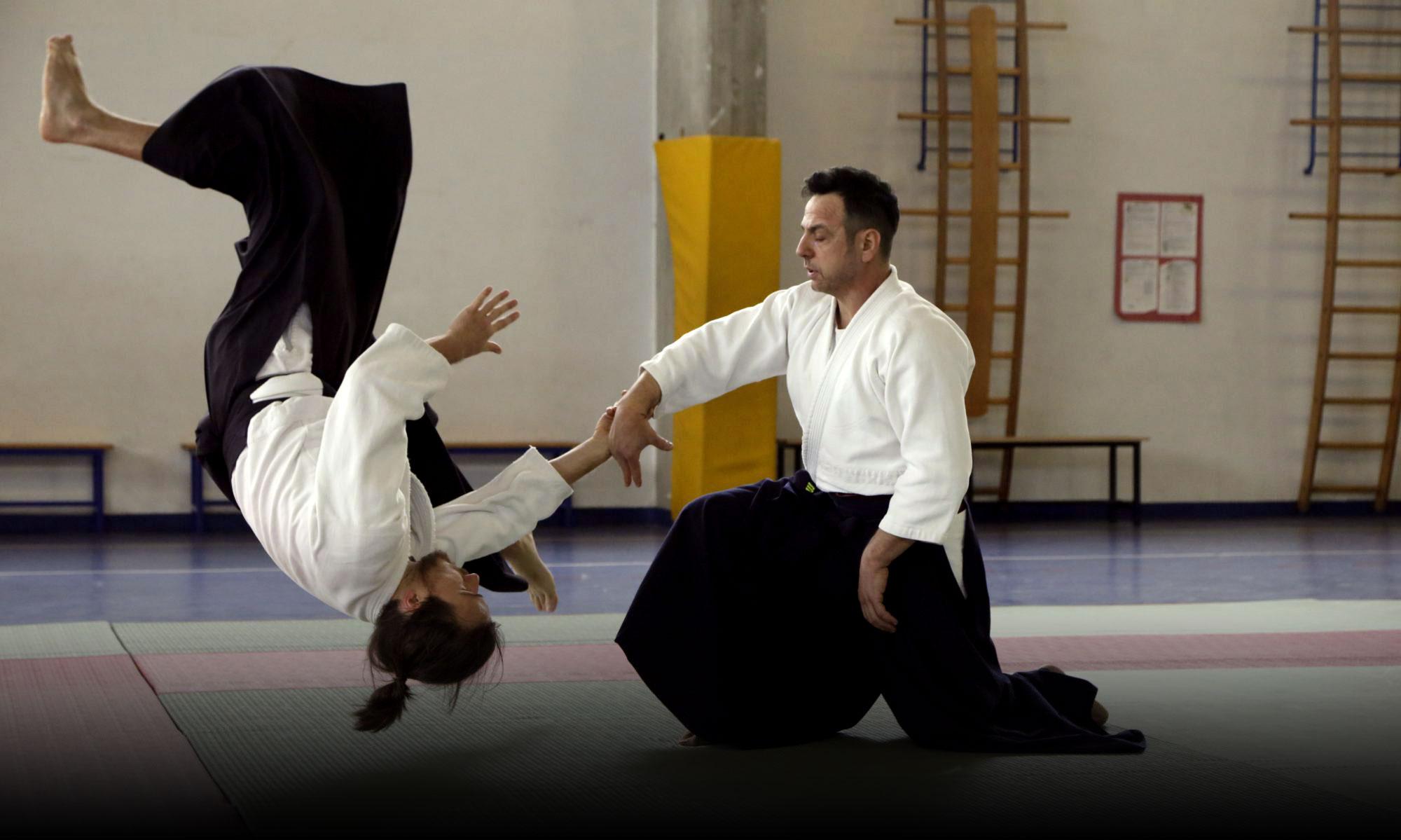 Aikido Seikikan